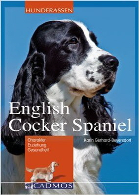 English Cocker Spaniel - Karin Gerhard-Beyersdorf