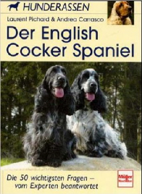 English Cocker Spaniel - Laurent Pichard